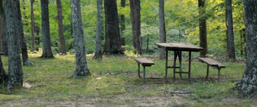 Fall camping checklist header.