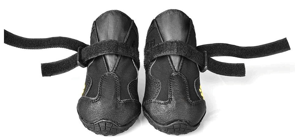 A set of tactical dog shoes in black.